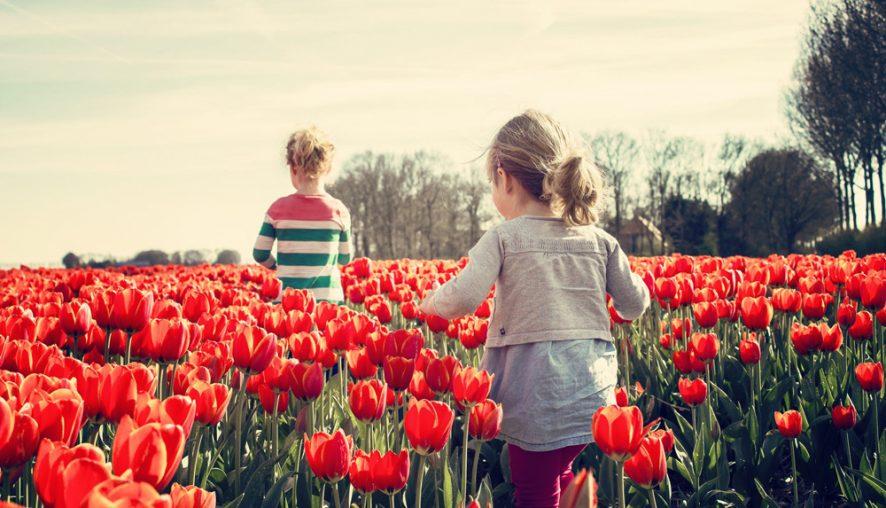 10 activități de primăvară alături de copii!